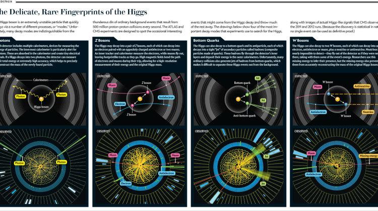 scientificamerican1012-66-I5