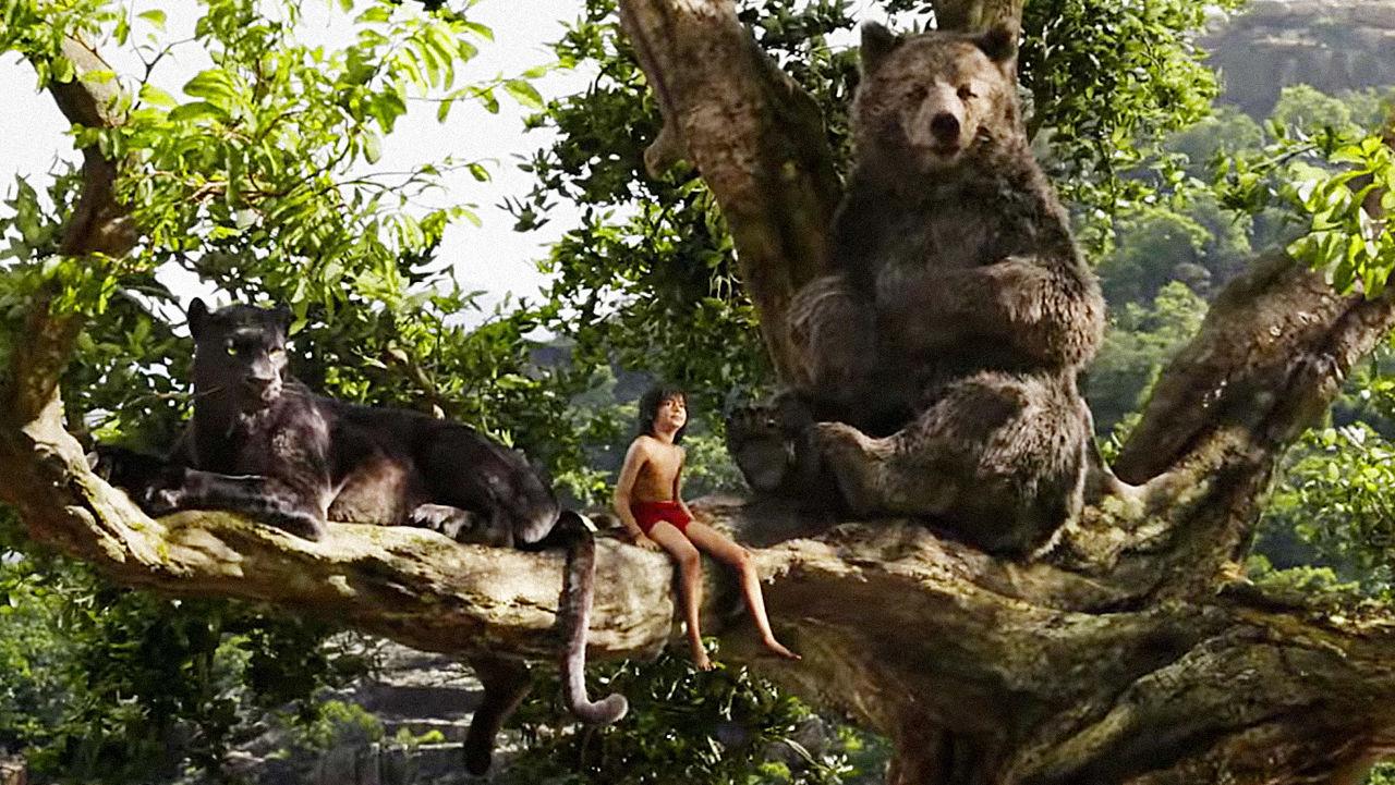 Acquista il costume della mascotte dell orso del nord africa baloo