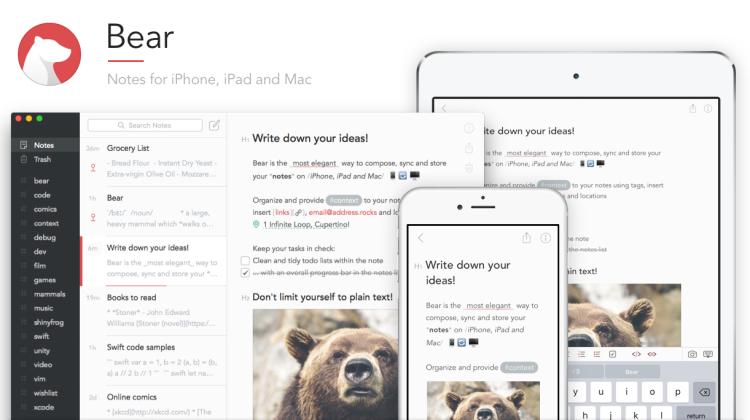 bear-app