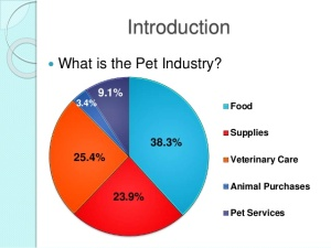 trends-in-the-pet-industry-mba-thesis-4-638