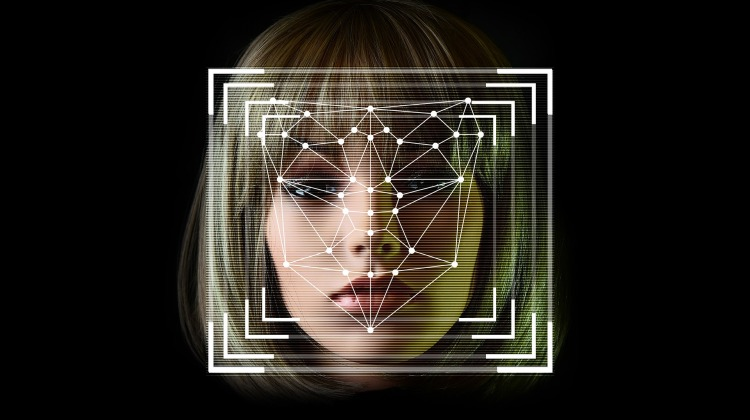 face-detection-4760281_1920