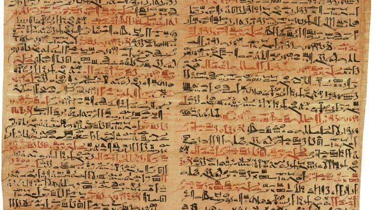 papyrus-63004_1920