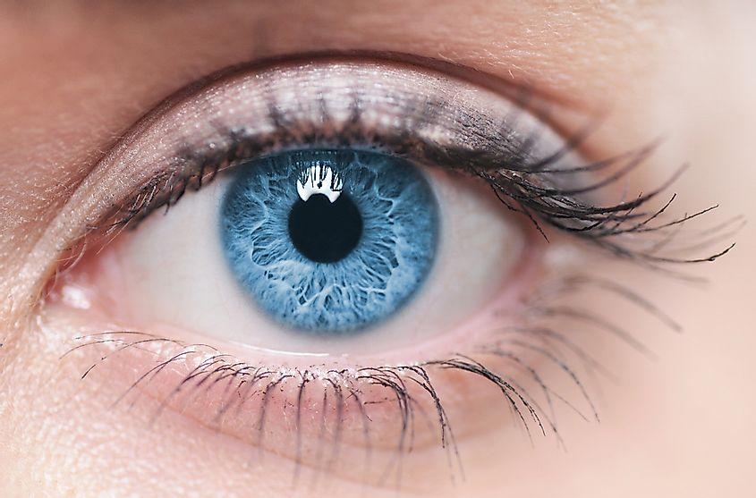 Riflesso luce occhi